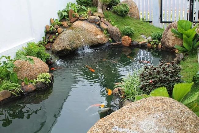 Kinh nghiệm xây hồ cá trước nhà theo phong thủy